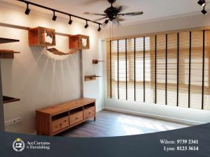 Long wooden venetian blinds with cat wall climbers.